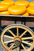 Wheels / rounds of Gouda cheese on cart wagon at Waagplein Square, Alkmaar cheese market, The Netherlands