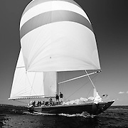American Eagle, 12 Meter Class, sailing in the Museum of Yachting Classic Yacht Regatta.
