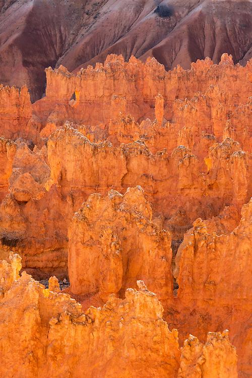 Felsformationen des Bryce Canyons