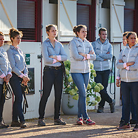 Arqana August Yearling Sale 20/08/2017, Deauville, photo: Zuzanna Lupa