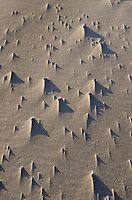 Wind sculpted sand patterns, Harris Beach State Park Oregon
