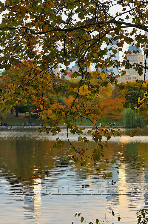 Fall in Central Park Manhattan.