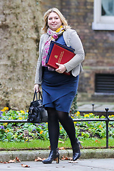 December 18, 2018 - London, United Kingdom - Karen Bradley - Secretary of State for Northern Ireland  is seen on her arrival at the Downing Street to attend the weekly Cabinet Meeting. The Cabinet will discuss the preparations for a ''No Deal'' Brexit. (Credit Image: © Dinendra Haria/SOPA Images via ZUMA Wire)