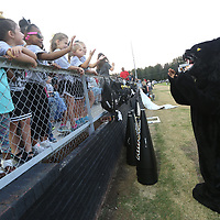 Young fans wave hello to the Amory panther mascot from the stands before the start of Friday night's game against Aberdeen.