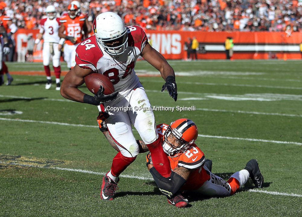 Arizona Cardinals tight end Jermaine Gresham (84) catches a late second quarter pass for a gain of 13 yards and a first down while covered by Cleveland Browns cornerback Joe Haden (23) who looks up from the ground while making the tackle during the 2015 week 8 regular season NFL football game against the Cleveland Browns on Sunday, Nov. 1, 2015 in Cleveland. The Cardinals won the game 34-20. (©Paul Anthony Spinelli)