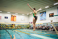 The women's swimming and diving meet between the New Hampshire Wildcats and the Vermont Catamounts at the Frank D. Forbush Natatorium on Saturday October 15, 2016 in Burlington, Vermont.