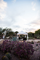 PHOENIX - Dinner on the Desert 2016 at the Desert Botanical Gardens