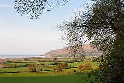 View out from the garden towards the countryside and Bristol Channel at Greencombe Gardens, Porlock, Somerset