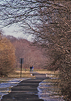 A couple walking their dog along the Lenepe Trail pathway, Plainsboro, NJ
