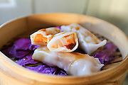 Steamed Chinese Spring roll with teriyaki sauce
