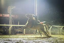 Pungista resgata cavalo que destraou momentos antes do páreo de 1.600m FOTO: Jefferson Bernardes/ Agência Preview