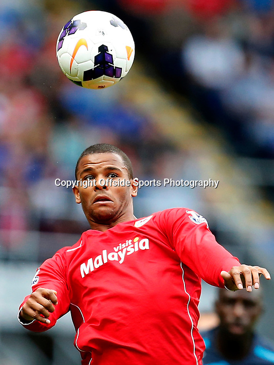 5th October 2013- Barclays Premier League - Cardiff City Vs Newcastle United - Fraizer Campbell of Cardiff City - Photo: Paul Roberts / Offside.