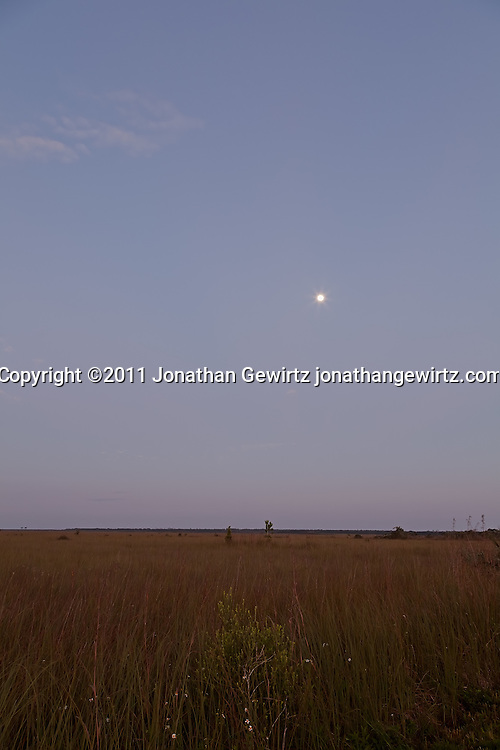 """The full moon sets over the Florida Evergaldes """"River of Grass"""" shortly before sunrise. WATERMARKS WILL NOT APPEAR ON PRINTS OR LICENSED IMAGES."""