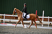 26 - 17th Nov - Dressage