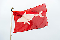 Red Shark Spotter Flag, Muizenberg Beach, False Bay, Cape Town, Western Cape, South Africa