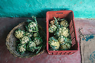 A basket of cauliflower vegetables is prepared for transportation at the collection centre in Machahi village, Muzaffarpur, Bihar, India on October 27th, 2016. Non-profit organisation Technoserve works with women vegetable farmers in Muzaffarpur, providing technical support in forward linkage, streamlining their business models and linking them directly to an international market through Electronic Trading Platforms. Photograph by Suzanne Lee for Technoserve