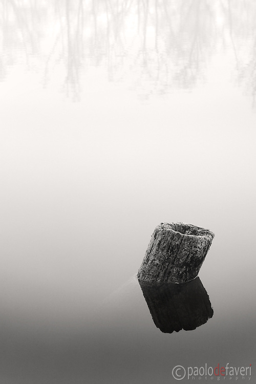 A tree stump lies in the still water of the Po River near to Carignano in Piedmont, Italy. Taken on a cold and foggy morning of December, a few moments after sunrise.