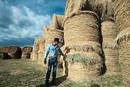 PRICE CHAMBERS / NEWS&amp;GUIDE<br /> Lockhart Cattle Company raises grass-fed Hereford cattle that depend on a good crop of hay to last them through the winter.