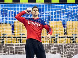 Matevz Skok of Celje PL during handball match between RK Celje Pivovarna Lasko (SLO) and Rhein-Neckar Loewen (GER) in Round 6 of EHF Champions League 2014/15, on November 23, 2014 in Arena Zlatorog, Celje, Slovenia. Photo by Vid Ponikvar / Sportida