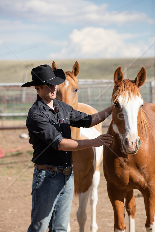 cowboy with horses on a ranch