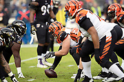 Cincinnati Bengals rookie center Billy Price (53) gets set to snap the ball as the Bengals offensive line faces the Baltimore Ravens defensive line during the NFL week 11 regular season football game against the Baltimore Ravens on Sunday, Nov. 18, 2018 in Baltimore. The Ravens won the game 24-21. (©Paul Anthony Spinelli)