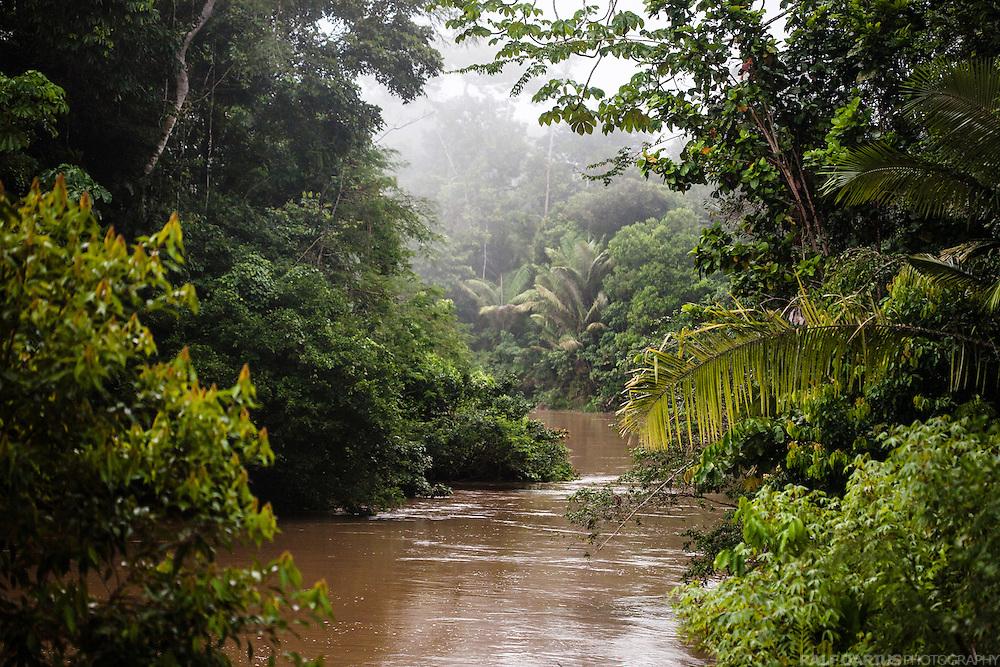 Shiripuno, Huaorani Territory - Ecuador