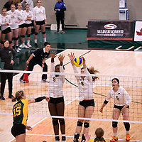 4th year middle blocker Kathleen Ens (8) of the Regina Cougars in action during Women's Volleyball home game on November 3 at Centre for Kinesiology, Health and Sport. Credit: Casey Marshall/Arthur Images