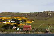 West Point Settlement seen from West Point Harbour. The Shearing Shed in the building on the beach.<br /> West Point Island. Off of West Falkland. FALKLAND ISLANDS.<br /> An island owned by Roddy and Lily Napier who have lived there for most of their lives. It is a small sheep farm with about 1,000 sheep and some cattle but now they survive mainly on tourism with several cruise ships visiting during the summer. The island is renowed for its huge Black-browed Albatross Rockhopper Penguin colonies.