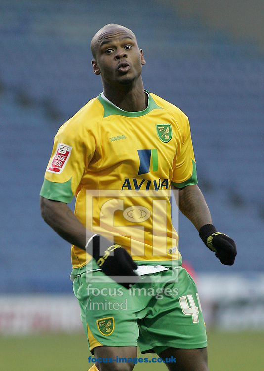 Sheffield - Sunday November 29th, 2008: Leroy Lita of Norwich City during the Coca Cola Championship match against Sheffield Wednesday at Hillsborough, Sheffield. (Pic by Michael Sedgwick/Focus Images)
