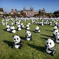 Nederland,Amsterdam ,29 oktober 2008..Het Museumplein in Amsterdam wordt sinds woensdagochtend opgesierd met 1600 panda's van papier-maché. Deze panda's verbeelden de zestienhonderd exemplaren die er volgens het Wereld Natuur Fonds (WNF) nog bestaan. WNF heeft de panda's geplaatst om duidelijk te maken dat door de luxe levensstijl van de mens, dieren als panda's minder leefruimte krijgen.