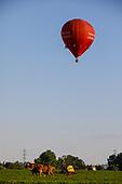 Hot Air Balloon PA