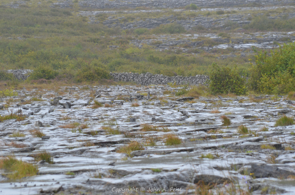 The Burren is a unique area of Ireland.  There are rocks everywhere and very little fertile soil. The plant life here is different from anywhere else in the country.  The stone walls are built with the rectangular shaped stones stacked vertically rather than the horizontal shape we are used to on old walls in the north east. County Clare, Ireland