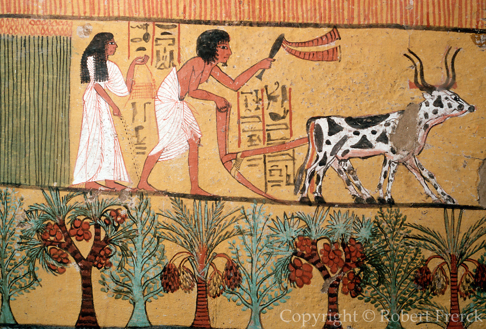 EGYPT, THEBES, WEST BANK Tomb of Sennedjem, plowing fields