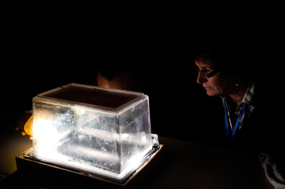 Building a Cloud Chamber