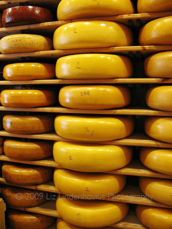 Cheese in Gouda, Holland