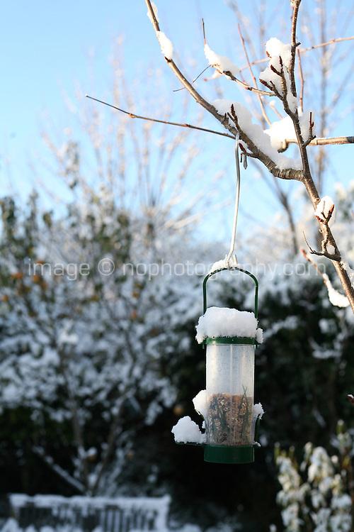 Seed birdfeeder in the snow