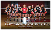 2017 Volleyball Banners