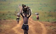cutting firewood in Uganda