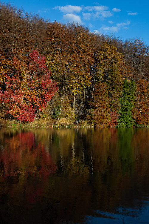 Autumn reflections in the lake at Chateau de la Hulpe, etang de la longue queue, near Brussels, Belgium.