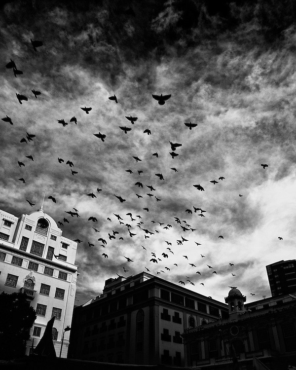 Invasion in Green Market Cape Town