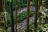 Tsumago to Magome: Nakasendo trail; Nagoya