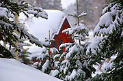 USA, Idaho, Valley County, Donnelly, Tamarack Resort, A Cabin in the Winter