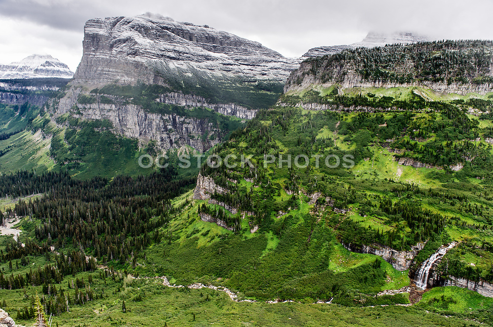 Logan Pass Trail at Glacier National Park