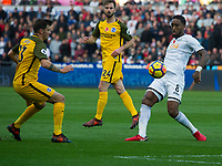 Football - 2017 / 2018 Premier League - Swansea City vs. Brighton & Hove Albion<br /> <br /> Leroy Fer of Swansea City defends, at The Liberty Stadium.<br /> <br /> COLORSPORT/WINSTON BYNORTH