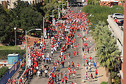 The football team, cheerleaders and fans engage in the Wildcat Walk before a game at the University of Arizona, Tucson, Arizona, USA.