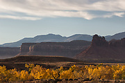 Autumn colors adorn the valley in Bears Ears National Monument, Utah.