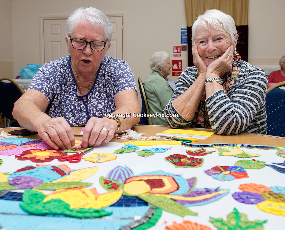 Picture by Christian Cooksey/CookseyPix.com on behalf of South Ayrshire Council.<br /> <br /> Strictly Seniors magazine.<br /> <br /> VASA, Book &amp; Bun, Activities<br /> <br /> <br /> <br /> All rights reserved. For full terms and conditions see www.cookseypix.com