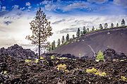 Lava Land landscape view of Lava Butte in the Newberry National Volcanic Monument near Bend, Oregon