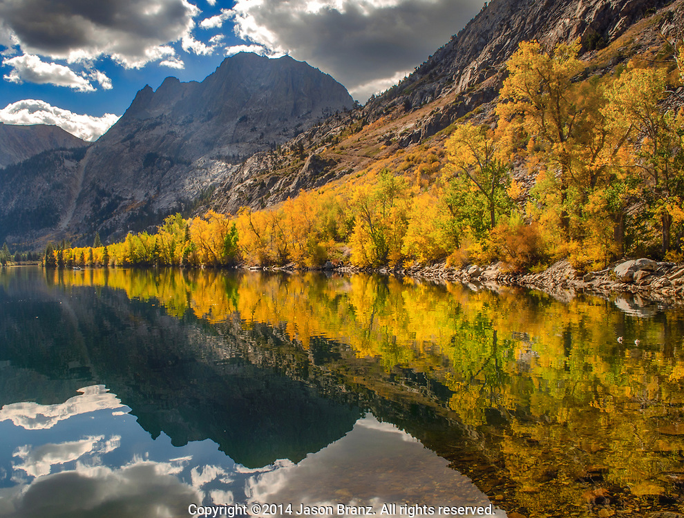 Autumn aspen trees reflected in Silver Lake, Mono County, California.