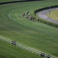 Belmont Stakes - American Pharoah